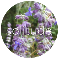 russian sage solitude flower essence