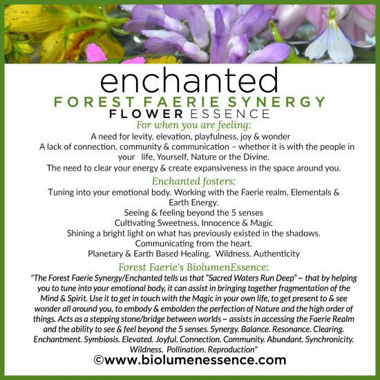 Enchanted Forest Faerie Synergy