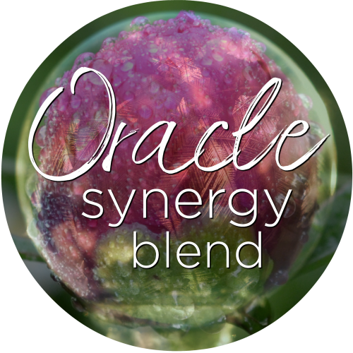 flower essence oracle synergy blend