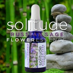 solitude Russian sage flower essence