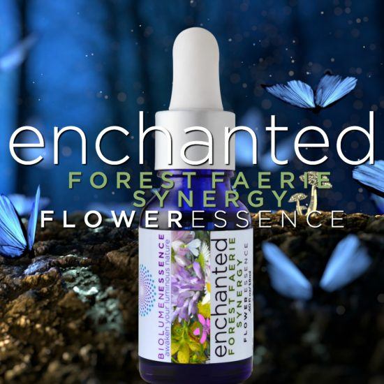 Enchanted Forest Faerie Synergy Flower Essence