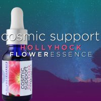 Comic Support Hollyhock Flower Essence
