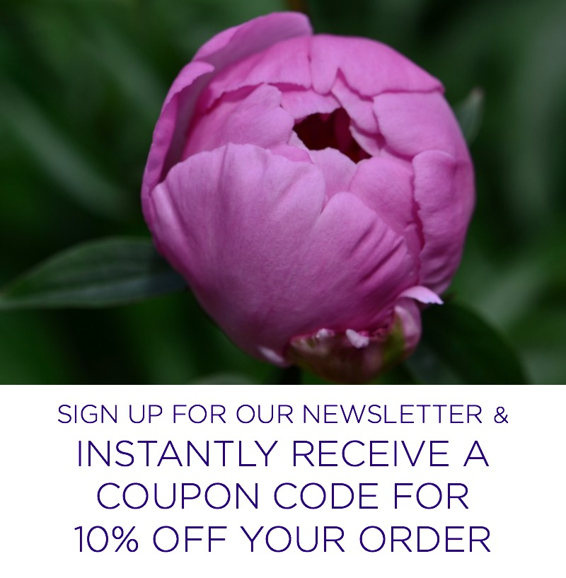 sign up for 10% off