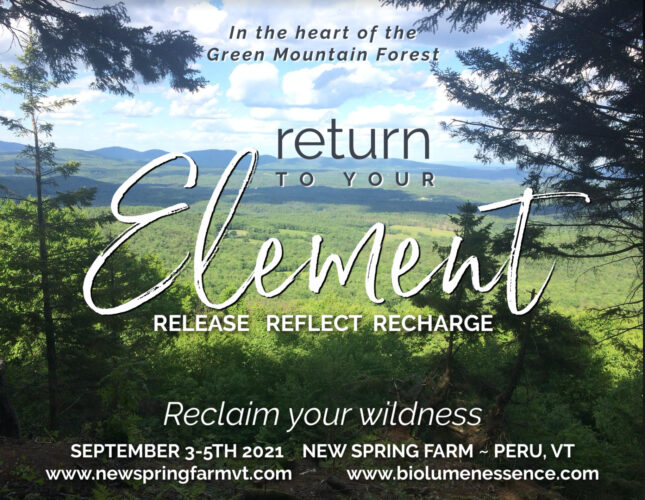 Return to your Element Retreat